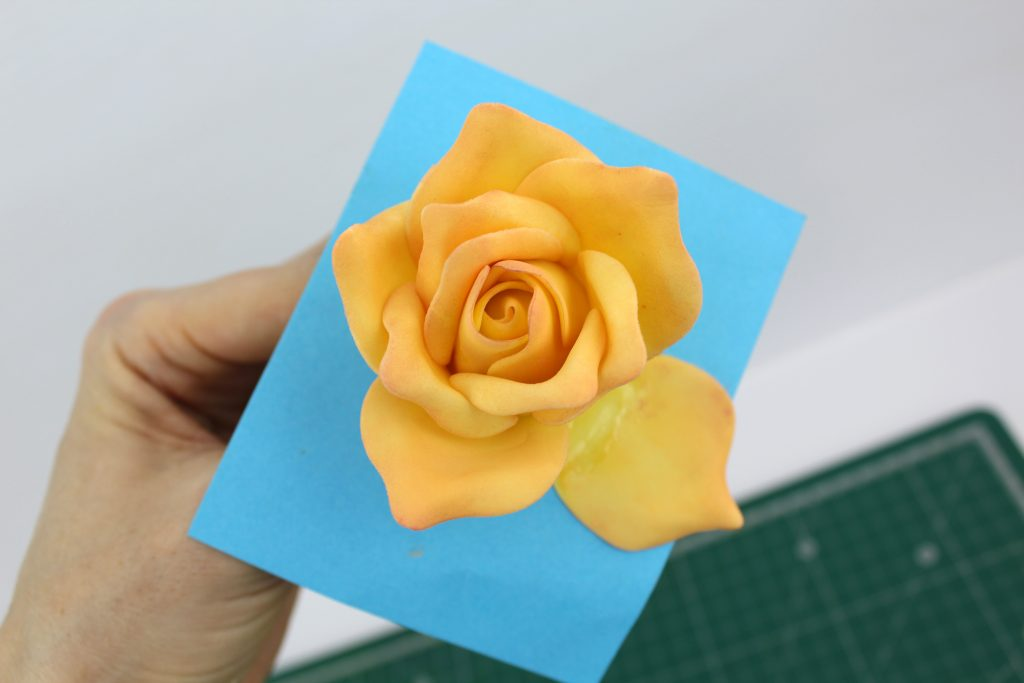 Edible Gum Paste Rose