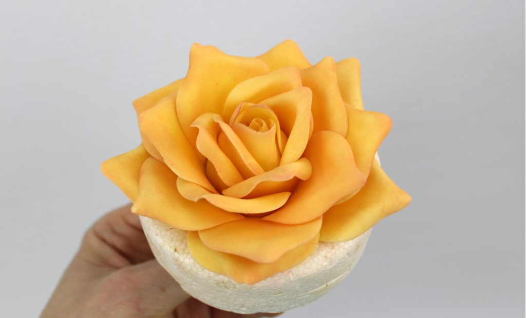Full sugar Rose tutorial